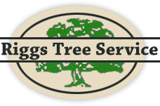 Riggs Tree Service, Inc